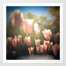 Dreamy Pink Tulips Art Print