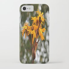 Sunflowers iPhone 7 Slim Case