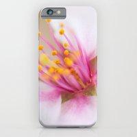 Magenta Stamen iPhone 6 Slim Case