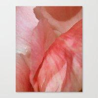 Waves of Pink - Peonies Canvas Print
