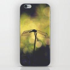 Silhouette  iPhone & iPod Skin