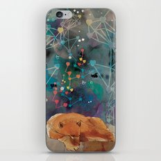 Feed Your Soul iPhone & iPod Skin