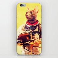 Captain Cat iPhone & iPod Skin