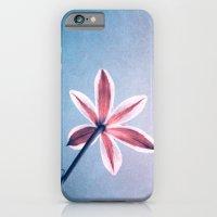stella iPhone 6 Slim Case