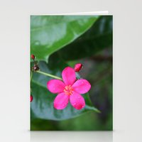 Follow the leader Stationery Cards