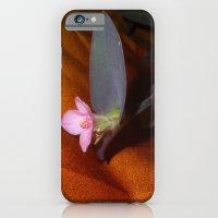 Purple Spiderwort on Orange iPhone 6 Slim Case