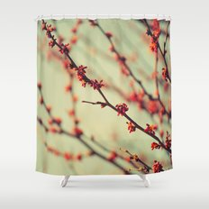 When spring was autumn... Shower Curtain