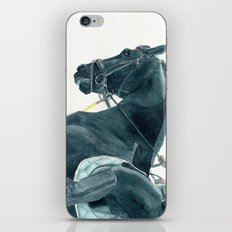 Friesian Horse 2 iPhone & iPod Skin