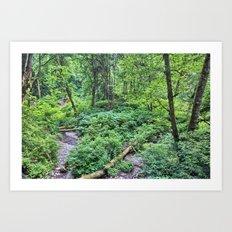 Winding Down the Hills Art Print