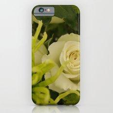 White and Green Arrangement iPhone 6 Slim Case