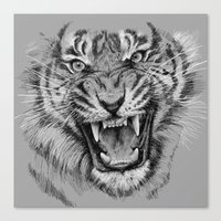 Tiger Drawing Black and White Animals Canvas Print