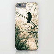 Crow Blur iPhone 6 Slim Case