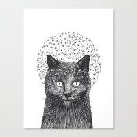 Dandelion black cat Canvas Print