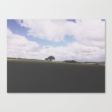 Open. Canvas Print