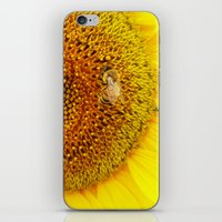 Bee on a Sunflower iPhone & iPod Skin