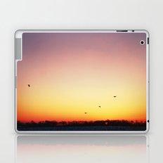 In Flight Laptop & iPad Skin