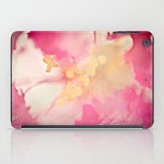 Bushed iPad Case