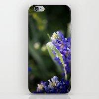 Blue Morning Dew iPhone & iPod Skin