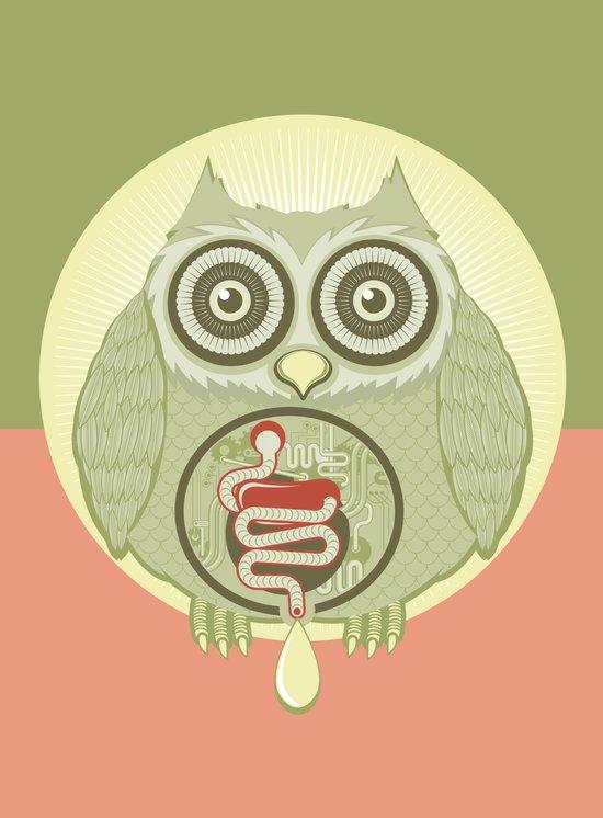 Anatomy of an owl Art Print