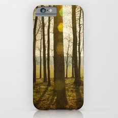 Afternoon Sunlight with Lens Flare iPhone 6 Slim Case