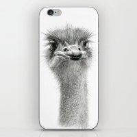 Cute Ostrich Expression … iPhone & iPod Skin