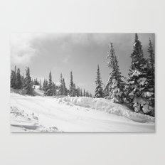 Winter Day 25 Canvas Print