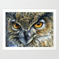 Owl 811 Art Print
