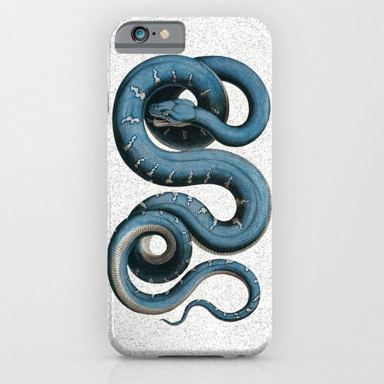 Blue White Vintage Snake Illustration Animal Art iPhone & iPod Case