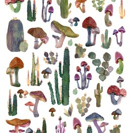 Art Print - Cactus and Mushrooms NEW!!! - franciscomffonseca