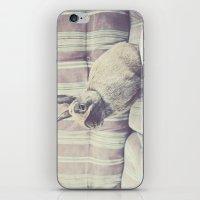 Bunny Rabbit  iPhone & iPod Skin