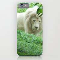 iPhone & iPod Case featuring Lion by Starr Cuevas Photography