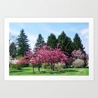 Crab Apple Trees Art Print