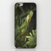 Ferm iPhone & iPod Skin