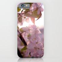 Sunlit peak iPhone 6 Slim Case