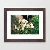 Like Petals Framed Art Print