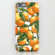 Oranges Slim Case iPhone 6s