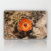 Cactus Flower (Landscape… Laptop & iPad Skin