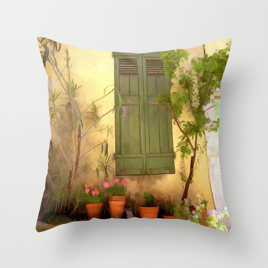 Weathered Beauty Throw Pillow