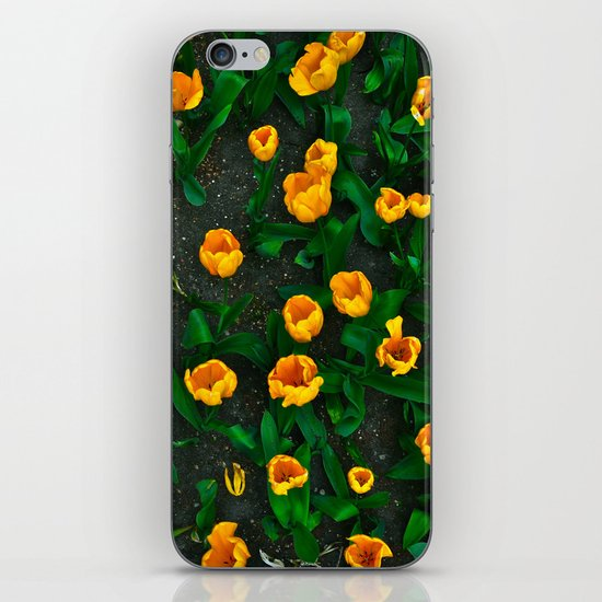 New York City Florals iPhone & iPod Skin