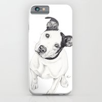 iPhone & iPod Case featuring Rosco (Pit Mix) by Beth Thompson
