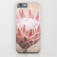iPhone & iPod Case featuring Pretty in Pink by Paul & Fe Photography