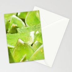 Jello Stationery Cards