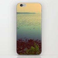 Potomac iPhone & iPod Skin