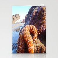Sun Bathing Stationery Cards
