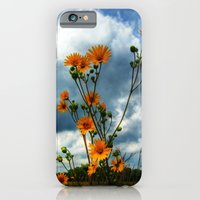 iPhone & iPod Case featuring Prairie by Ornithology