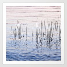 lake weeds Art Print