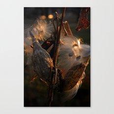 Astoria park plant Canvas Print
