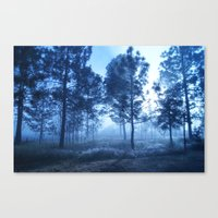 Black Forest Canvas Print