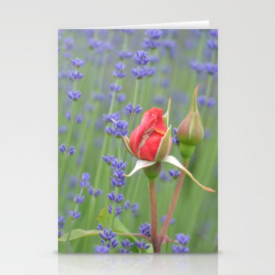 Roses and Lavender Stationery Card