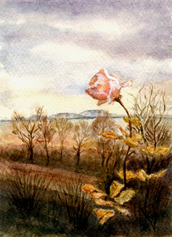 Autumn at the Lake Balaton Art Print